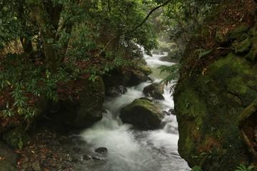 美しい水が流れる山吹水源