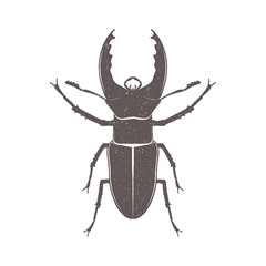 Vintage brown deer beetle emblem. Grunge badge, typogrphic symbol suitable for T-shirts or print. Isolated vector illustration