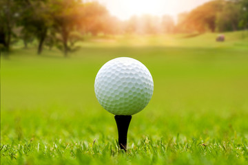 Golf ball on beautiful green grass with sunlight in morning time. Sport and recreation playground for golf club concept.