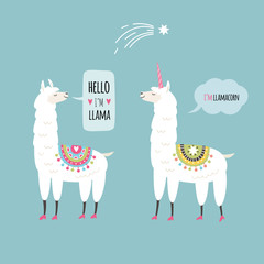 llamas illustration, cards design