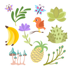 Vector cartoon cute set of savanna and tropical flowers, leaves and fruits