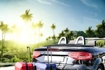 summer car and landscape of palms