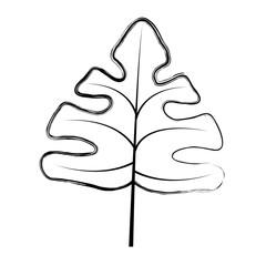grunge beauty nature leaf exotic style