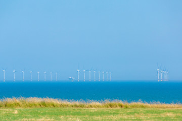 Wind turbines in an off shore field against a blue sky and sea  with golden crops and green grass in the foreground