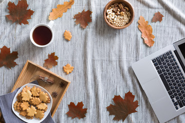 Hello Autumn flat lay background. Top view of workspace or office desk on knitted blanket with laptop, tea or coffee cup, maple leaves, vintage book and honey biscuits and cookies.