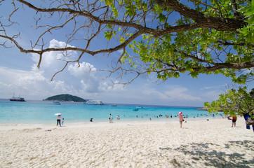 beautiful beach in similan island, andaman thailand,