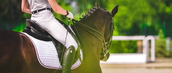 Elegant rider woman in white uniform and sorrel horse. Beautiful girl at advanced dressage test on equestrian competition. Professional female horse rider, equine theme.