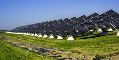 Solar panels placed on a countryside meadow of apulia - selective focus, copy space