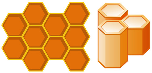 Front and Side View of Honeycomb