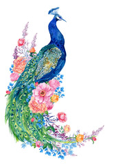 big bird and peacock flowers .watercolor hand painting