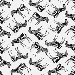 Semaless Pattern with Zebras.