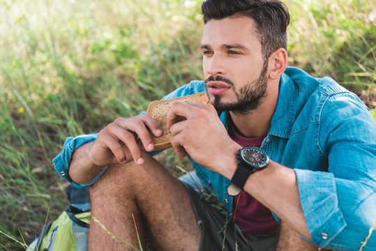 handsome man eating sandwich and sitting on green grass