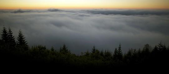 Scenic Foggy Landscape