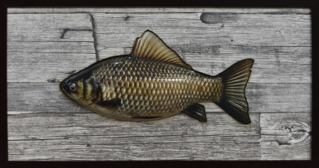 varnished crucian on a background of a wooden texture