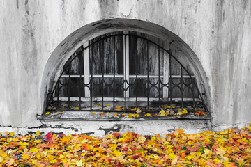 Old dirty window with metal grid on building wall with fallen colorful red, orange and yellow maple leaves. Autumn contrasts in city.