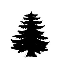 Black silhouette of pine tree icon isolated on white background.