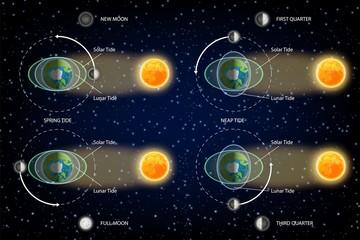 Lunar and Solar tides diagram vector illustration