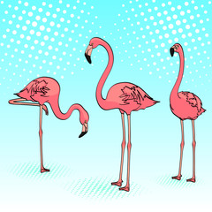 Pop art background. Three pink flamingos on the blue sea, birds rest. Vector