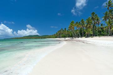 Foto auf AluDibond Karibik Beautiful Tropical Caribbean beach in the Dominican Republic