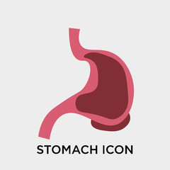 Stomach icon vector sign and symbol isolated on white background, Stomach logo concept