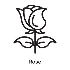 Rose icon vector sign and symbol isolated on white background, Rose logo concept
