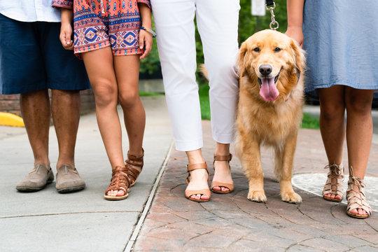 Family walking golden retriever