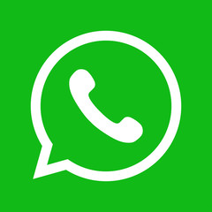 Phone icon. Green button in the smart phone. Green button icon vector