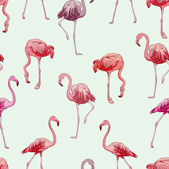 Canvas Prints Seamless flamingos pattern, vector