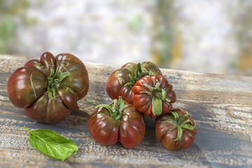 group of Crimea black tomatoes from Crimea on old wooden board on olq blury wall background,