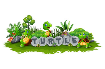 Happy three turtles cartoon playing in the garden