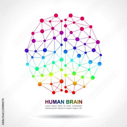 Image result for brain social network