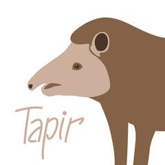animal tapir vector illustration  flat style  profile