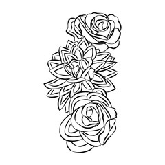 Rose motif, Flower design elements vector on white background