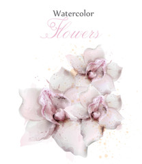 Orchid flowers watercolor isolated Vector. Beautiful floral decors