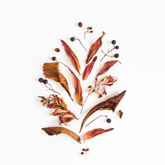 Autumn composition. Pattern made of dried flowers and leaves on white background. Autumn, fall concept. Flat lay, top view, square