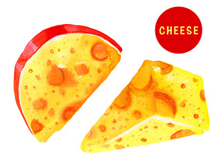 Stylized hand drawn watercolor illustration set with cheese