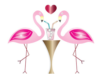 two flamingos in love drinking cocktail vector - summer illustration