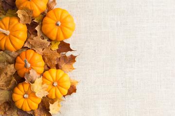 Fall themed pumpkin background autumn border Horizontal