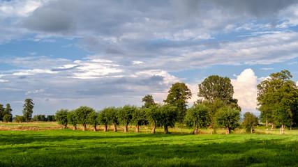 Lato na Podlasiu