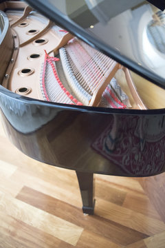 Cconert grand piano strings