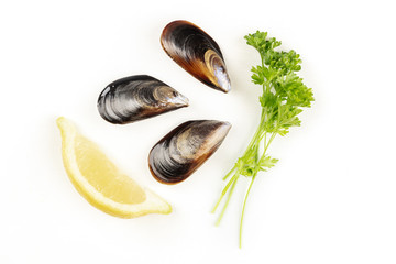 Acrylic Prints Seafoods Overhead photo of three raw mussels on white with lemon, parsley, and copy space