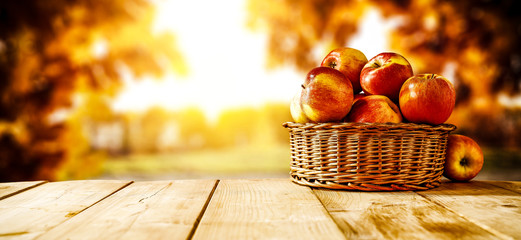 Fresh red apples and autumn time