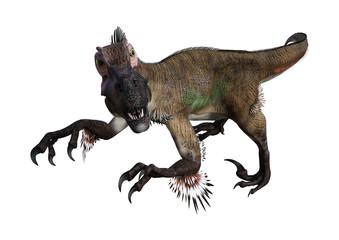 3D Rendering Dinosaur Utahraptor on White Wall mural