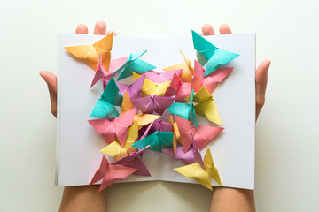 Mental health concept. Colorful paper butterflies sitting on book in shape of butterfly. Harmony emotion. Origami. Paper cut style.