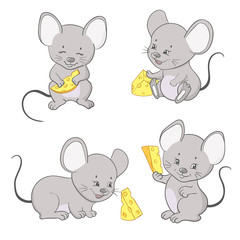 Mouse with cheese vector illustration. Set of cute little mice.