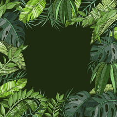 Tropical natural jungle palm background