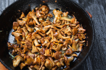 Fried chanterelle mushrooms in a cast iron pan