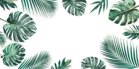 Tropical leaves set with white copy space background.Nature and summer concepts