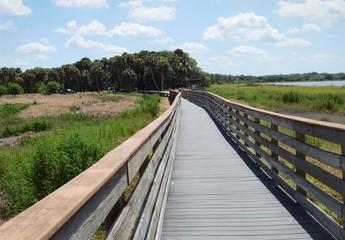 bridge leading to the woods