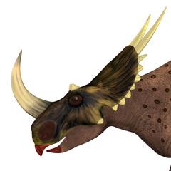 Brown Rubeosaurus Dinosaur Head - Rubeosaurus was a Ceratopsian herbivorous dinosaur that lived during the Cretaceous Period of North America.